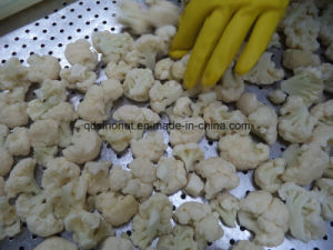 New Crop Best Quality Frozen Cauliflower 3cm-5cm Size (BRC, FDA, ISO, KOSHER, HALAL) pictures & photos