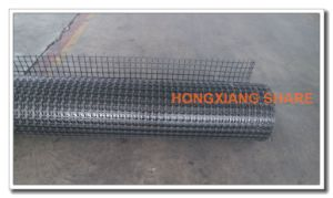 Warp Knitted Polyester Geogrid Used Railway, Water Conservancy pictures & photos