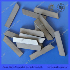 Tungsten Carbide Wear Resistant Small Strips pictures & photos