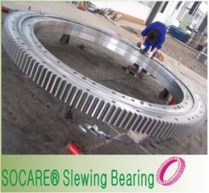 Replacement of Kaydon Dt Series Doble-Row Ball Slewing Bearing