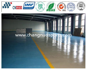 Color Durable Leisure Area Flooring for Indoor or Outdoor Sites pictures & photos