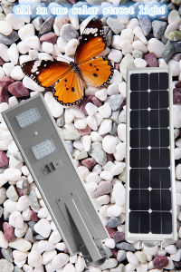 IP65 Protection Level and Solar Light Type Solar Lawn Light pictures & photos