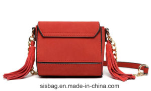 Fashionable Nubuck Leather Cross Body Bag Women Tassel Bag pictures & photos