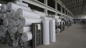 EVA Foam Sheet Roll for Shoes Raw Material and Floor Accessories pictures & photos