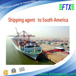 Sea Transportation Shipping to Havana Manzanillo Cuba