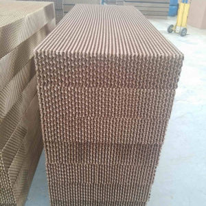 Honey Comb Evaporative Cooling Pad for Cooler Poultry Farm and Greenhouse pictures & photos