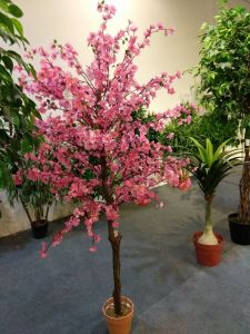 Artificial Plants and Flowers Peach Tree Gu1223164758 pictures & photos