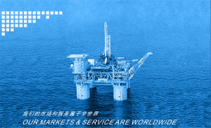 Oil Field Chains pictures & photos