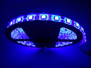 Felxble 5050 of Waterproof LED Strip/Non-Waterproof LED Strip pictures & photos