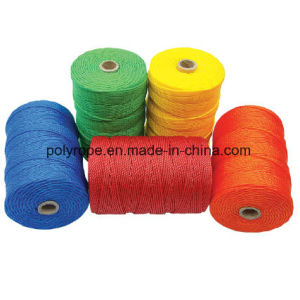 PE Color Twine pictures & photos