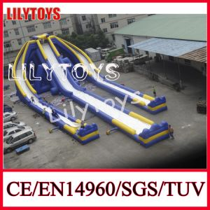 Giant Inflatable Trippo Water Slide for Adult pictures & photos