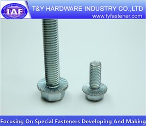 (Carbon steel SS 304 SS 316 M3-M64) DIN 6921 Hex Flange Bolts pictures & photos