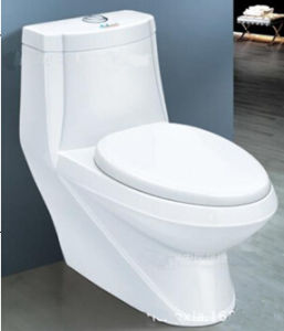 Ceramic Washdown P-Trap S-Trap Wc Toilet for Washroom pictures & photos