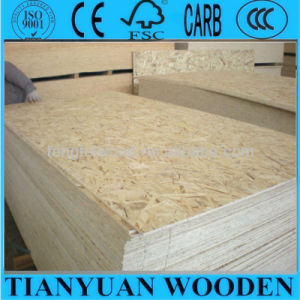 9mm/12mm/18mm OSB From Linyi Manufacturer pictures & photos