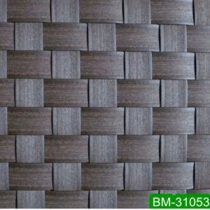 with SGS Plastic Artificial Rattan Furniture Material (BM-31053)