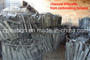 China Best Supplier Firewood Sawdust Briquette Making Machine pictures & photos
