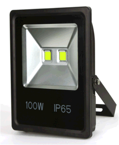New 100W LED Food Light