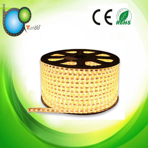 Competitive Price SMD3528 RGB LED Strip (YB-3528-4MM) pictures & photos
