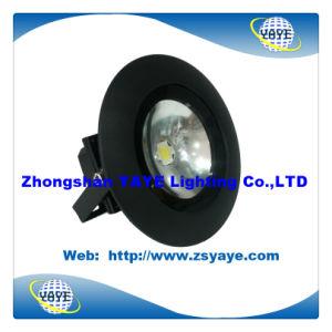 Yaye Hot Sell 2014 Newest Design 10W 15W LED Floodlight LED Garden Light LED Spotlight pictures & photos