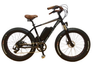 Big Mountain Snow E Bicycle E-Bike Electric Scooter Motorcycle 350W Great Power Shimano Gear pictures & photos