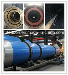 Successed Technical Reliable Quality Biomass Drying Equipment pictures & photos