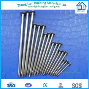 High Quality Wire Nails (ZL-CN) pictures & photos