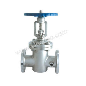 Stainless Steel Jacket Gate Valve pictures & photos