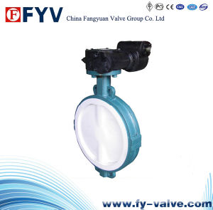 API 609 Centric Construction Butterfly Valve with Gear pictures & photos