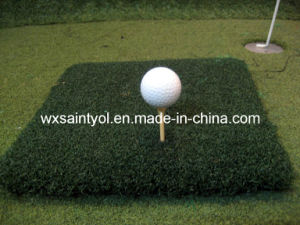 T Turf for Golf Field pictures & photos