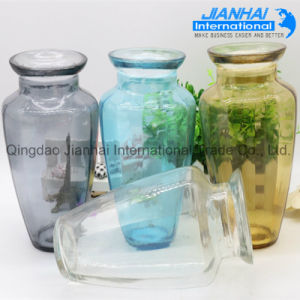 Wholesale Cheap Clear Decorated Colored Glass Vase pictures & photos