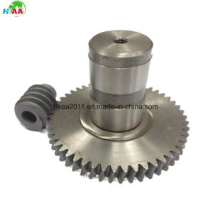 High Precision Brass Worm Gears and Steel Driving Gears pictures & photos