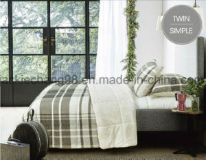 Printed Coral Fleece and Pvfleece Quilt & Sham Set pictures & photos