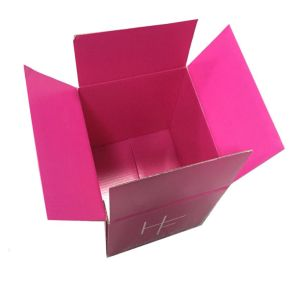 Kraft Corrugated Packing Box for Sale (FP7026) pictures & photos