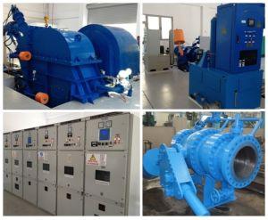 Pelton Turbine/ Turbine Generator Unit/ Power Plant pictures & photos