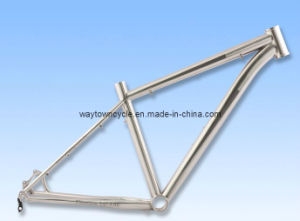 Bike Frame (WT-MB202) pictures & photos