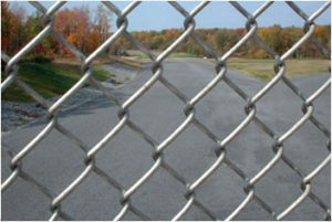 Galvazed/PVC Coated Chain Link Fence pictures & photos