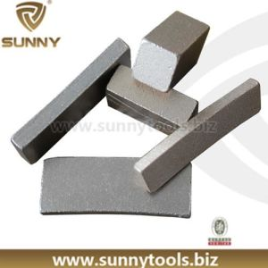 Diamond Segment Saw Blade Cutting Segment (SN-8) pictures & photos