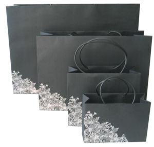 High Quality Various Sizes Coloured Paper Bag (YY--B0044) pictures & photos