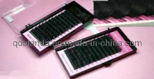 Siberian Mink Eyelash -Real Mink Individual Eyelash or Eyelash Packaging