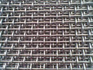 Crimped Wire Mesh in 100mmx100mm for Mine Sieving pictures & photos