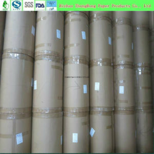 100% Virgin Wood Pulp PE Coated Paper for Food Packaging pictures & photos