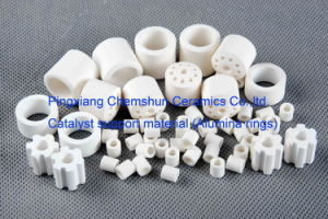 Chemical Tower Packing as Catalyst Carrier (Ceramics, Metals, Plastics) pictures & photos