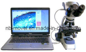 Digital Microscope (YJ-2005-DN) pictures & photos