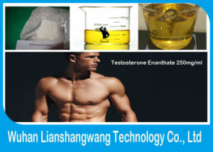 Injectable Testosterone Enanthate 250mg/Ml Primoteston Depot for Muscle Growth pictures & photos