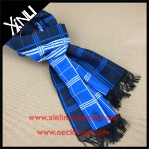 Soft Handfeel Jacquard Woven Viscose Scarf with Tassel pictures & photos