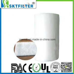 Air Filtration Polyester Filter Media pictures & photos