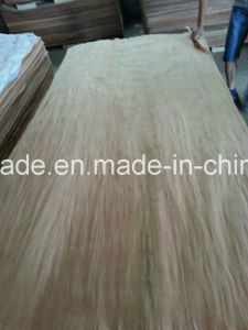 0.3mm Red Plb Veneer Linyi for Making Plywood pictures & photos