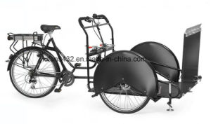Wheelchaair Transporter Tricycle for Old and Disable (DT-046) pictures & photos