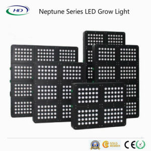 3W Modular LED Grow Light for Herbs (Neptune 200-1000W) pictures & photos
