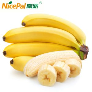 Natural Spray Dried Banana Fruit Powder / Banana Juice Powder /Banana Drink Powder pictures & photos